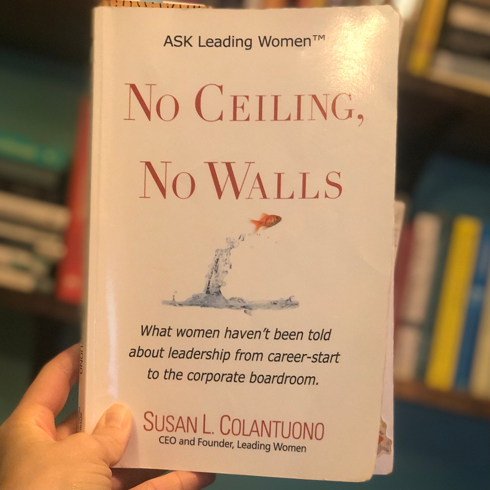 Copy of book titled No Ceiling, No Walls - on Mel Butcher's blog