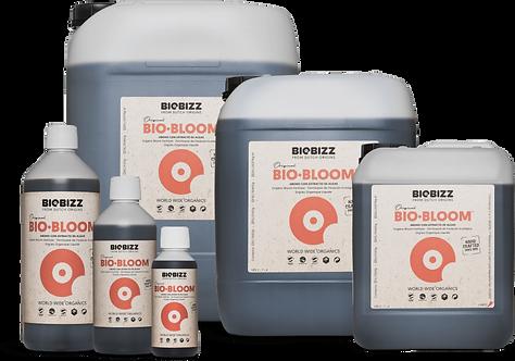Bio·Bloom