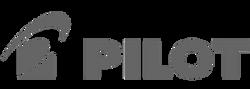 PILOT_logo_ACV_VisuaLCA