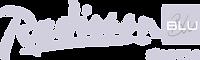 Logo blu cinza.png