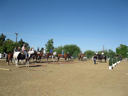 Ranch Horse Trail Workshop