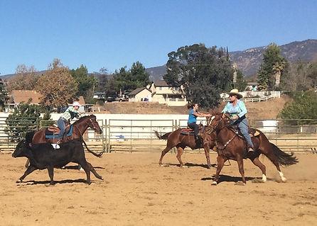Riders showing great teamwork during three man arena sorting