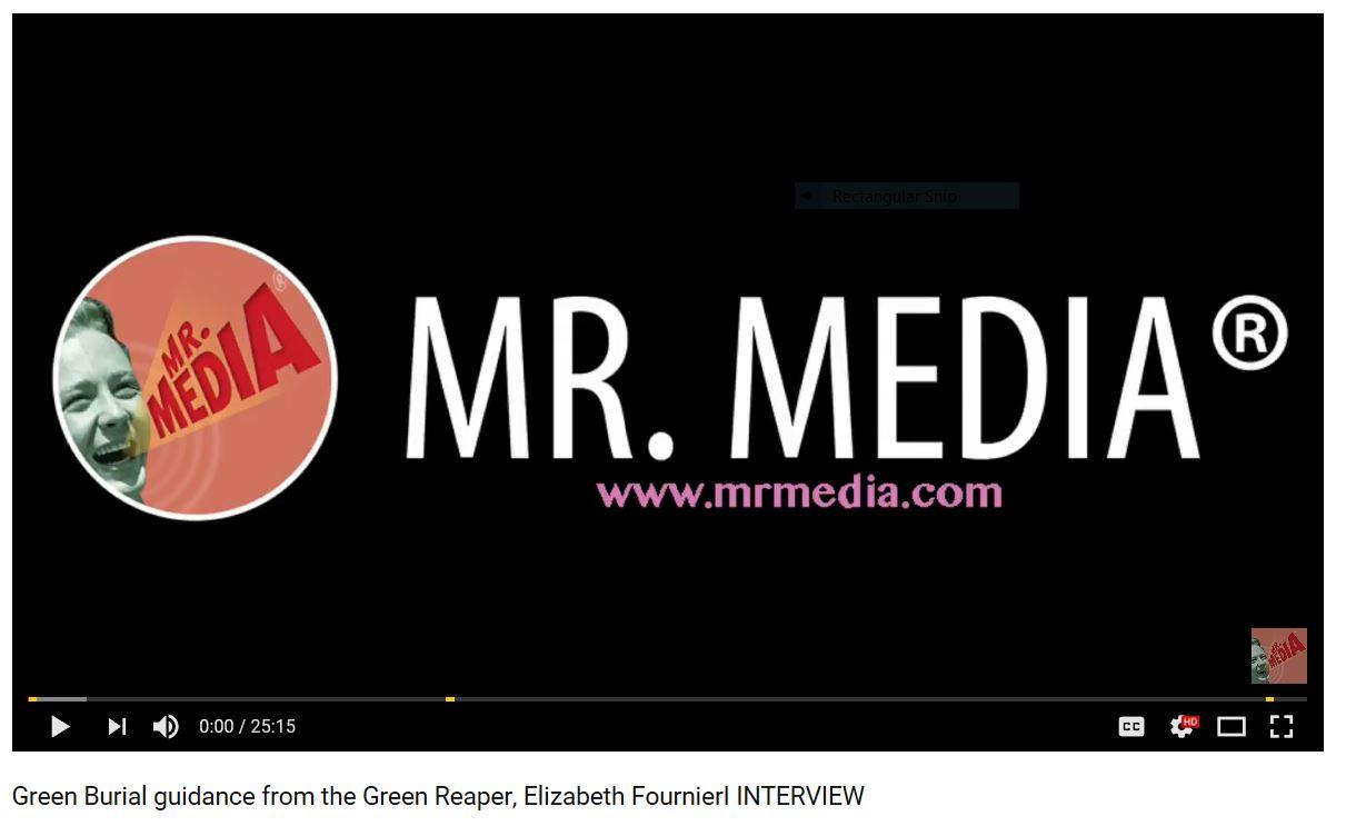mr media