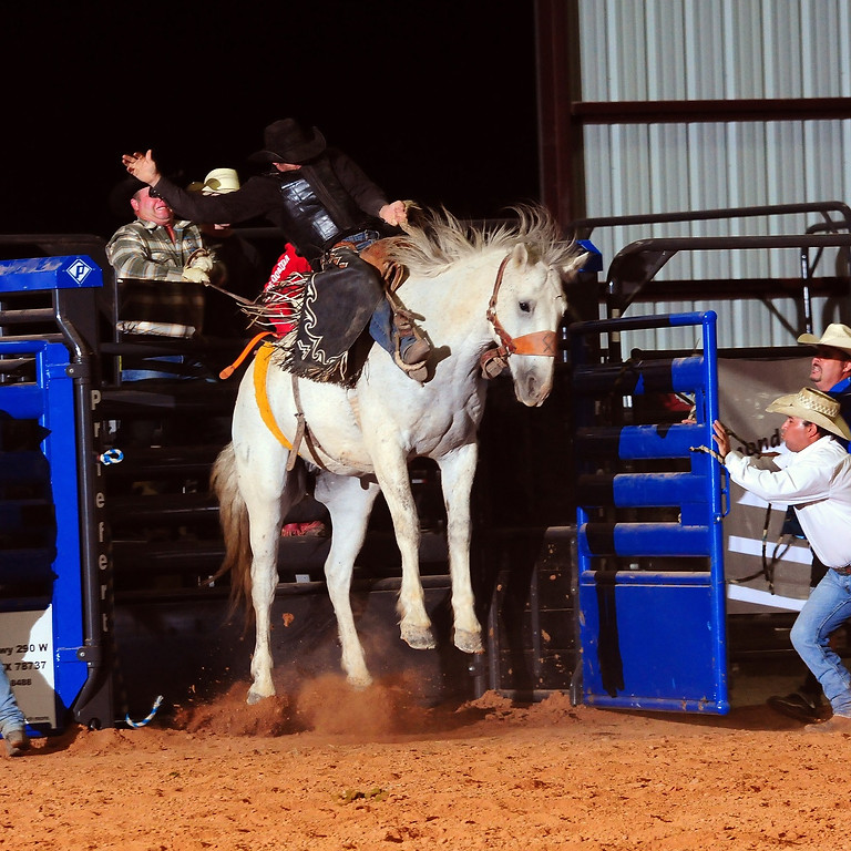 Dripping Springs Fair and Rodeo Friday, October 22, 2021