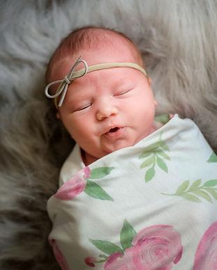 Prince Edward County Newborn Photography