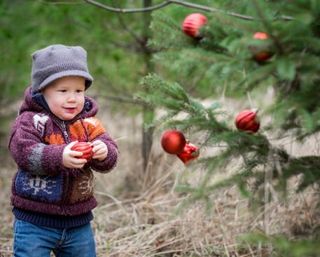 Christmas photos Trenton Ontario