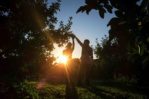 Brighton Apple Orchard Family Potos.jpg