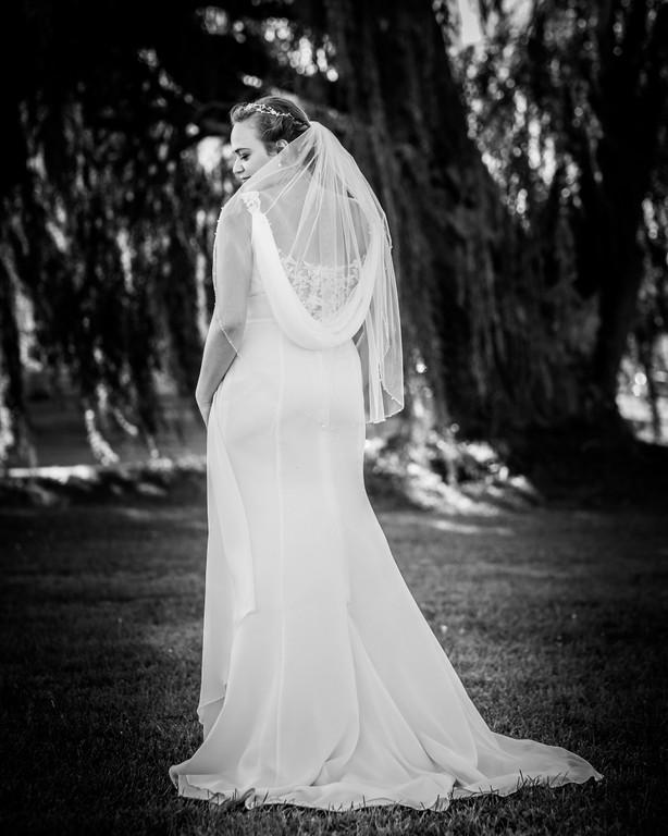 Belleville PEC Wedding Photography-18.jp