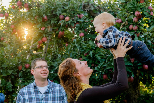 Fall family photos in an apple orchard