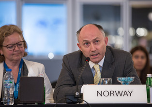 IRENA_13_COUNCIL_LOWRES-6504.jpg