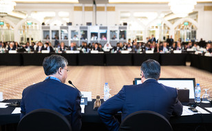 IRENA_13_COUNCIL_LOWRES-4984.jpg