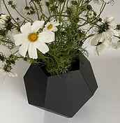 vase penta fleurs.jpg