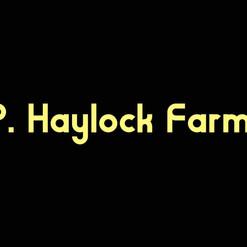 P. Haylock Farms