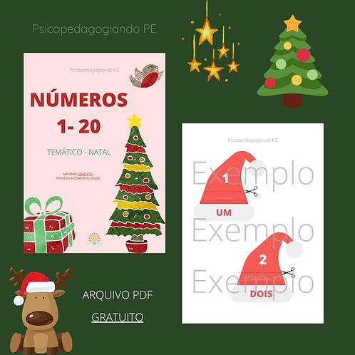 NÚMEROS 1- 20 (TEMÁTICO DE NATAL)