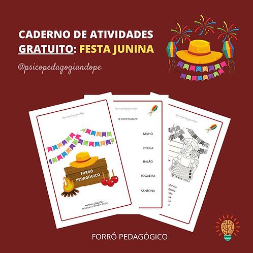 FORRÓ PEDAGÓGICO - CADERNO GRATUITO