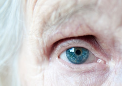 眼は加齢でどうなる?