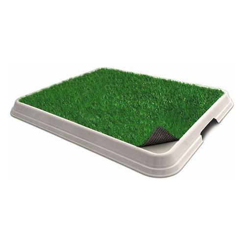 Eco Sanitário com grama