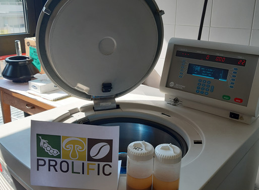 Protein Extraction: A PROLIFIC Breakthrough!