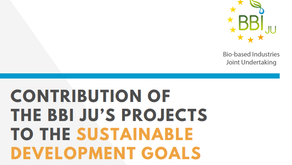 The impact of BBI-JU projects to SDGs