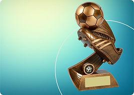 Soccer Trophies.jpg