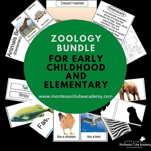 Zoology Bundle (132 pages of activities)