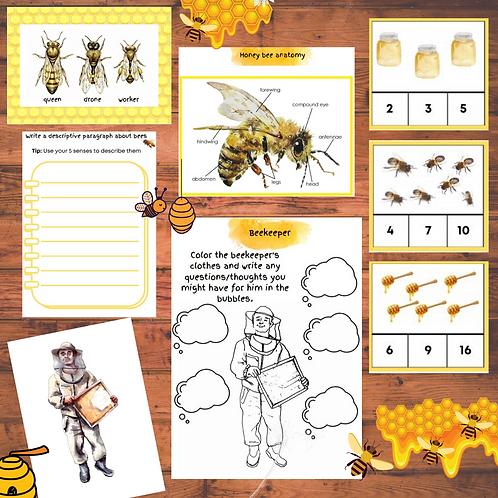 Honeybees Unit Study
