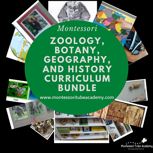 Zoology, Botany, Geography, and History curriculum bundle