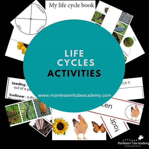 Life Cycles Pack