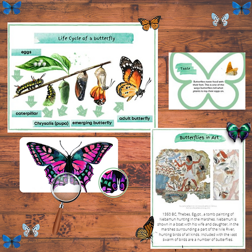 Butterflies Unit Study (95+pages)