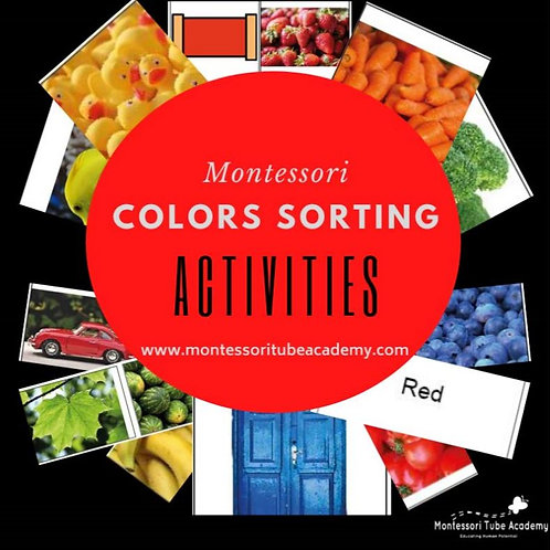 Colors Sorting Activities