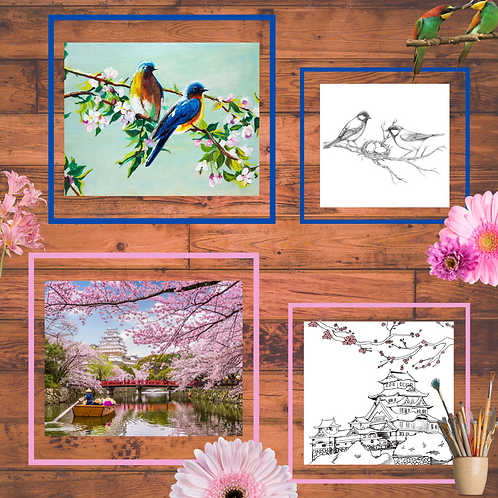 Spring paintings + coloring booklet