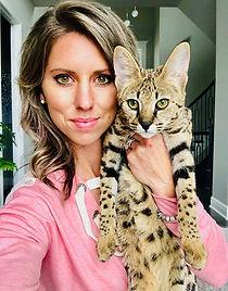 Available savannah kittens|f2 savannahs|Iwanna Savannah