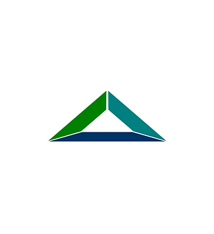 Nitricity Logo.png
