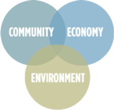 environment-community-economy.png