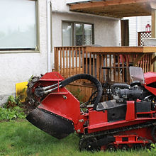10 Equipment Stump Grinder.JPG