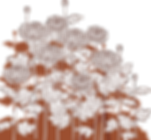 flower1533.png