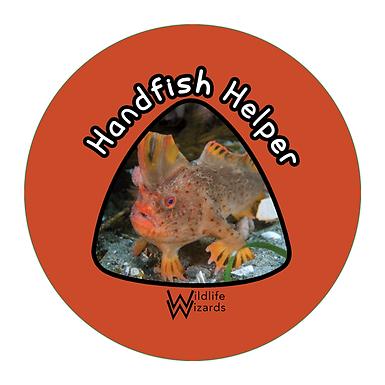 handfish-helper.png