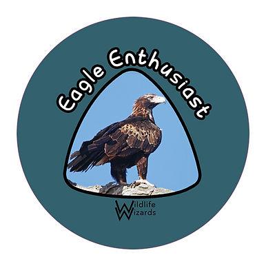 eagle-enthusiast.jpg