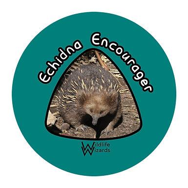 Echidna-Encourager.jpg