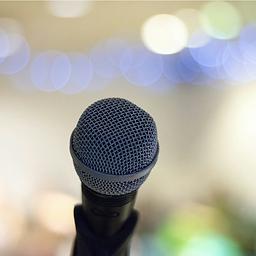 professional speaker public speaker