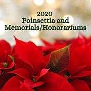 2020 Poinsettias Square.png