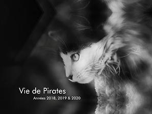 livre Pirate - vol.2