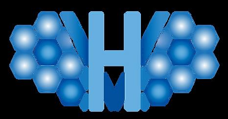 Valhalla Healthcare Logo