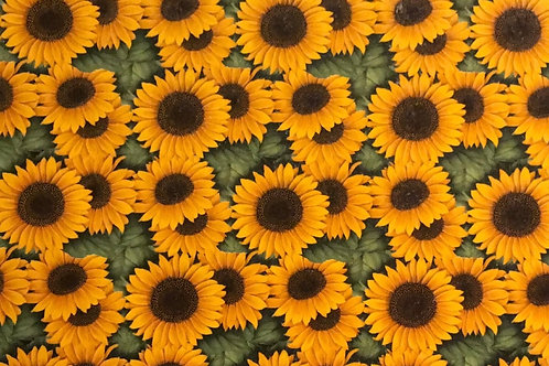 Sunflower Sheet 21cm x 30cm