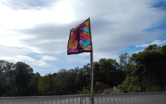 WCSS_Flag.JPG