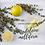 Thumbnail: Madeleine artisanale aux zestes de citron vert