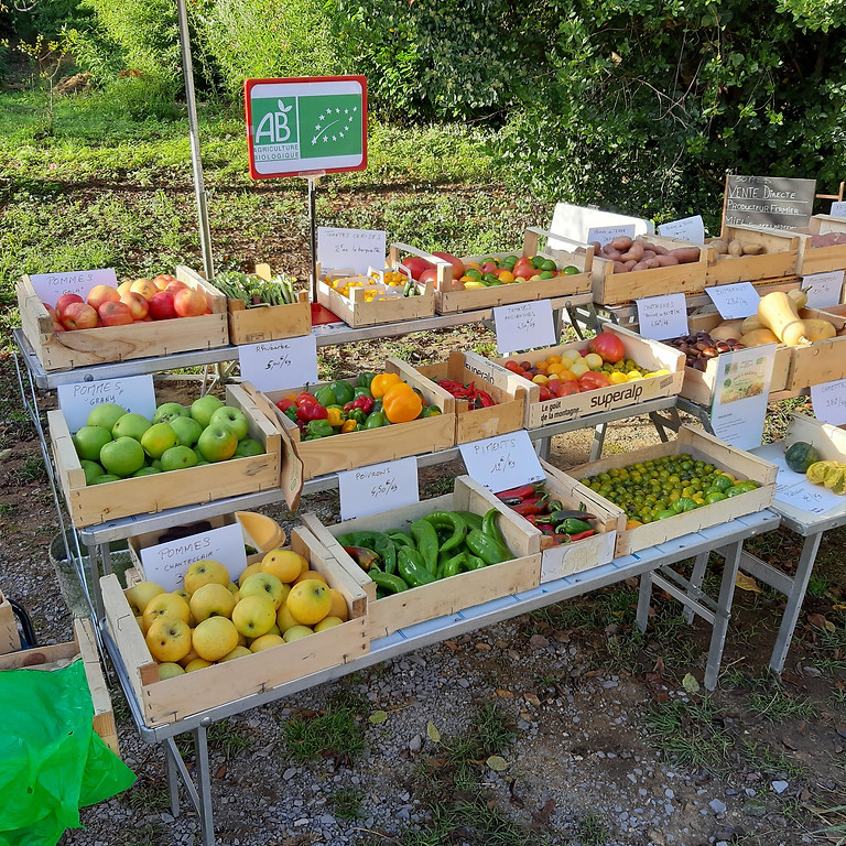 Vente de légumes BIO les jeudis matins ! (1)