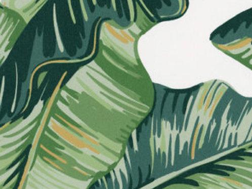 Leaf Translucent