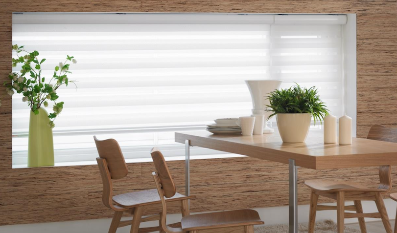 Zebra Blinds Translucent close