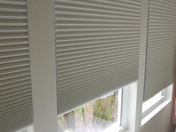 Cellular Blinds Single Cell